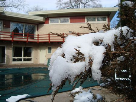 The Midwestern Midcentury house is ready for spring!