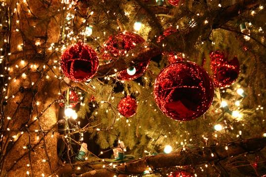 Christmas-tree-lights-2
