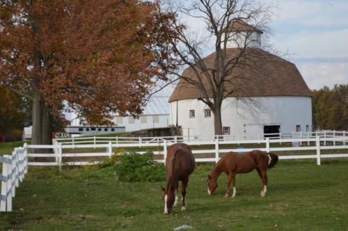 Issac Rozell Round Barn horses2