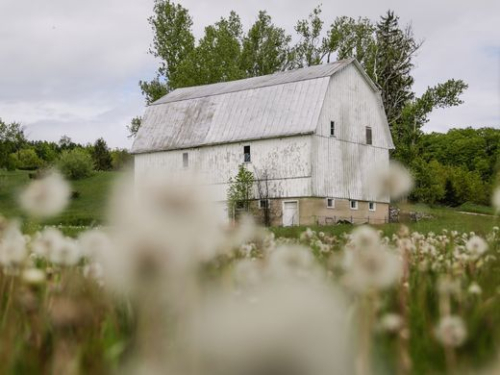 Poor Farm Barn_Detroit Freepress image
