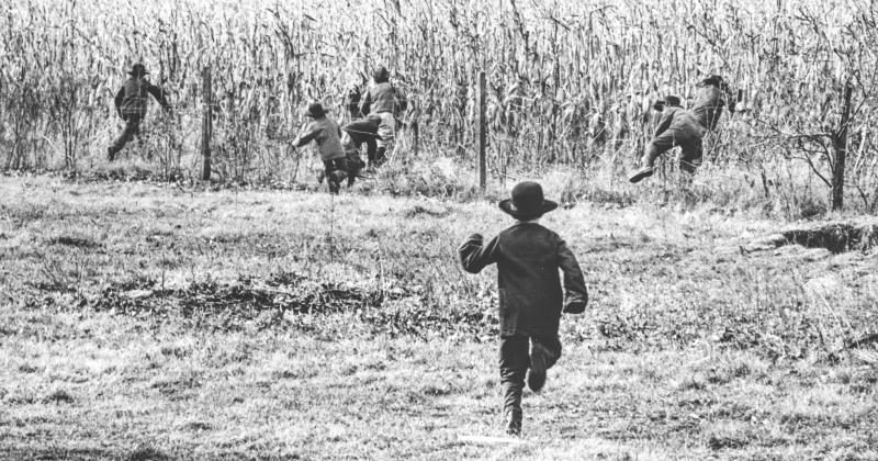 Amish kids DMR